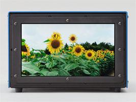 Японцы создали экран диагональю 9,6 дюйма с разрешением 3840 x 2160 пикселей!